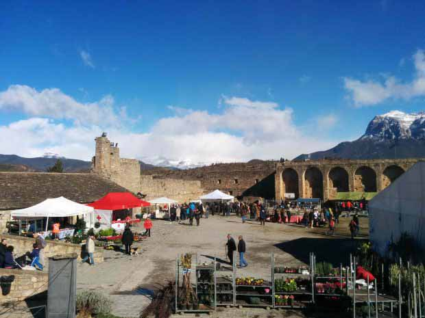 Feria Ainsa, ganadería, montaña, pirineo