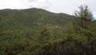San Fertús desde la ladera de enfrente_opt